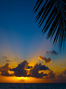 Maldivian Sunset Stock Images