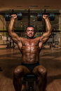 Male bodybuilder doing shoulder press whit dumbbell body builder Royalty Free Stock Photography