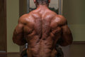 Male bodybuilder flexing his back in gym Royalty Free Stock Photography