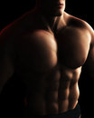 Male BodyBuilder Torso Digital Illustration Stock Photography