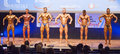 Male bodybuilders flex their muscles and show their best physiqu maastricht the netherlands october ali rezah from iran with other Royalty Free Stock Photo