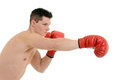 Male boxer punching isolated on white background Royalty Free Stock Photography