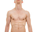Male Chest Anatomy - Man Muscles Front View Royalty Free Stock Photo