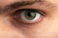Male eye closeup view of Royalty Free Stock Photos