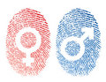 Male and Female Symbols Royalty Free Stock Images