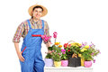 A male florist posing next to flowers Stock Images