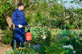 Male gardener protecting plant from vermin using sprayer Stock Image