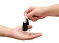 Male hand holding key Stock Image