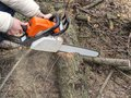 Male Hands Sawing A Tree Trunk...