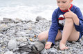Male kid feeding dove at the beach using hand serious white bird rocky his bare Stock Photography