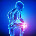 Male knee pain d rendered medical x ray illustration of transparent skeleton with and blue background Royalty Free Stock Image