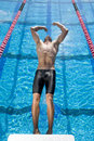 Male swimmer diving into swimming pool backwards elevated view Royalty Free Stock Image
