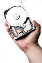 Male technician hand holding computer hard drive over white back Royalty Free Stock Photo