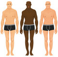 Male torsos Royalty Free Stock Photography