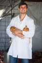 Male vet in hen house Royalty Free Stock Photo