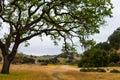 Malibu Creek State Park Royalty Free Stock Photo