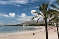 Mallorca beach in alcudia with palms Stock Image