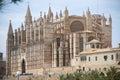 Mallorca cathedral in palma de Stock Image
