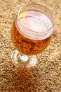 Malt and beer glass full of light standing on barley grains Stock Photos