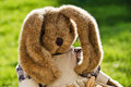 Mama rabbit enjoying the sunshine stuffed toy spring in a garden setting Royalty Free Stock Images