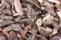 Mamajuana roots Stock Photo
