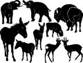Mammals animals collection of donkey elephant deer bison Stock Images