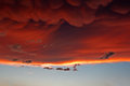 Mammatus clouds at sunset ahead of violent thunderstorm forming severe Royalty Free Stock Photos