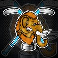Mammoth head from the side view with hockey puck and crossed stick. Logo for any sport team