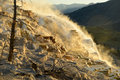 Mammoth Hot Springs in Yellowstone Royalty Free Stock Photo