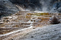 Mammoth hot springs, Yellowstone National Park Royalty Free Stock Photo