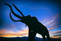 Mammoth statue silhouette in a desert sunset Royalty Free Stock Photo