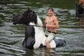Man bathes horse in the river Royalty Free Stock Photo