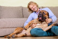Man with big dog young at home playing a bullmastiff positively laugh Stock Photos