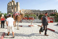 Man with camels in el jem tunisia september th walking around amphitheater tunisia Stock Image