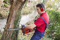 Man with chainsaw pruning a tree in day light Stock Photography