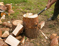 Man is chopping wood with axe Royalty Free Stock Photo