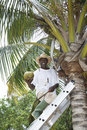Man with a coconut Royalty Free Stock Photography