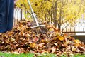 Man collecting fallen autumn leaves first person view Royalty Free Stock Photo