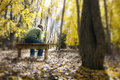 Man contemplates life issues on a bench in fall fo this sits and or family the warm leaves sunlight beams throught the trees Stock Photos
