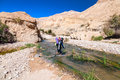 Man crossing the creek in wadi hasa in jordan Royalty Free Stock Photos