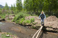 Man crossing flimsy bridge a walks delicately across a wooden beam over a small creek Stock Photography