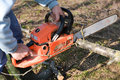 Man cuts tree with chainsaw concept of deforestation selective focus Stock Images