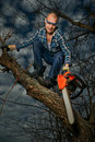 Man cutting a branch do not cut the bough you are sitting on Stock Image