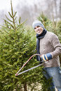 Man cutting Christmas tree Stock Photography
