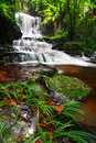 Man Daeng Waterfall Stock Photos