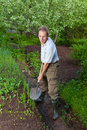 Man digs up a garden-bed with the first sprouts Stock Images