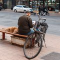 Man with a dog sitting on a bench and reading a newspaper. Royalty Free Stock Photo