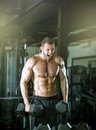 Man doing curls in gym young adult bicep and posing Royalty Free Stock Photography