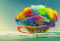 Man draws abstract tree with colorful smoke flare