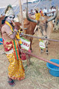 Man dressed as Sri Krishna poses in Desi Cow Mela Stock Photo